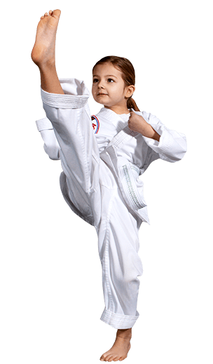 Kids Karate Taekwondo Martial Arts